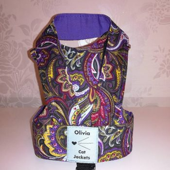 Paisley - Purple